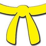 9. Kyu - gult bælte