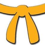 8. Kyu - orange bælte