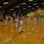 Fælles træning